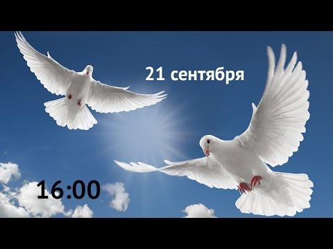 Прямая трансляция марша мира!
