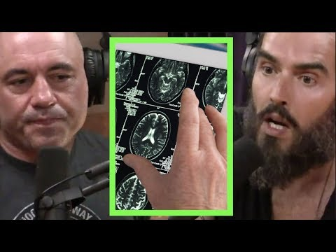 Joe Rogan | What Is The Purpose Of Innovation? W/russell Brand