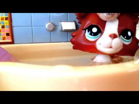 Littlest Pet Shop: Shower - Music Video (Happy 4th Of July)