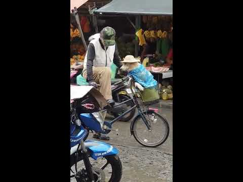 Elderly man making sure his dog won't get wet