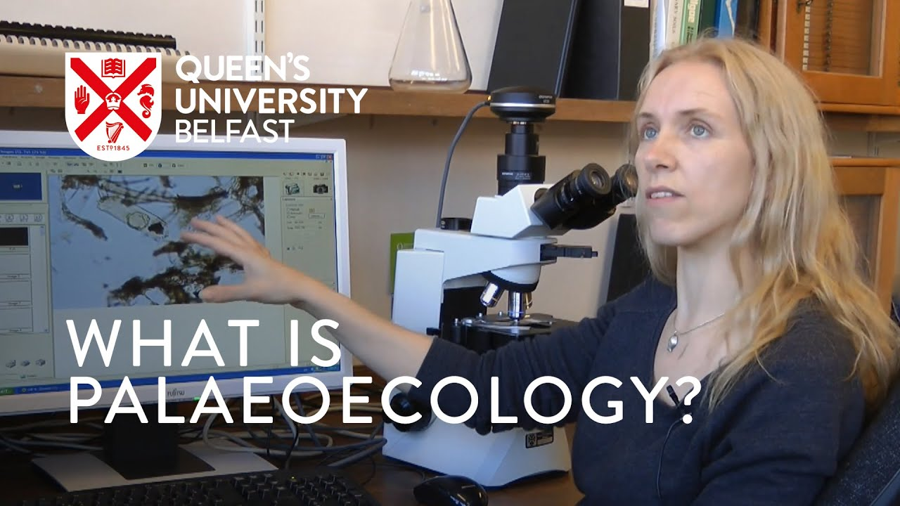 An Introduction to Palaeoecology by Dr Gill Plunkett