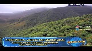 Video PADANG PASIR BERUBAH MENJADI HUTAN LEBAT ~ Fenomena Langka MP3, 3GP, MP4, WEBM, AVI, FLV Oktober 2018