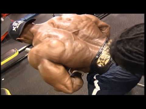 Monster Bodybuilding Fitness
