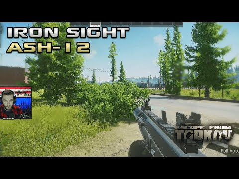 Slapping With The Iron Sights ASH-12 - Escape From Tarkov