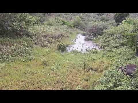 Enchente repentina no Sertão da Bahia (22/12/2013) - Parte 1