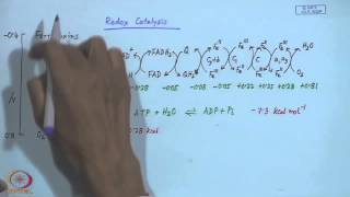 Mod-06 Lec- 06 Electron Transport Proteins - II