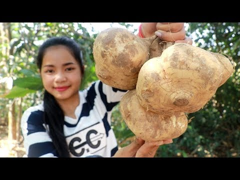 Awesome Cooking: Jicama Fruit With Shrimp Paste Sauce Recipe - Cook & Eating Food Show