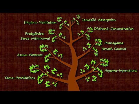 The Eight Limbs of Yogic Meditation - Patanjali's Yoga Sutras