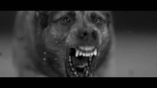 Video Woodkid - Iron (Official Video) MP3, 3GP, MP4, WEBM, AVI, FLV Juni 2018