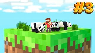 Minecraft Skyblock BUT it's on one block.. #3 (THE PANDA TAKEOVER)