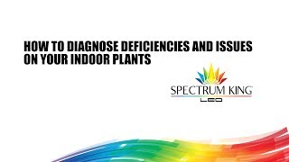 How to diagnose deficiencies and issues on your indoor plants by Spectrum KING LED