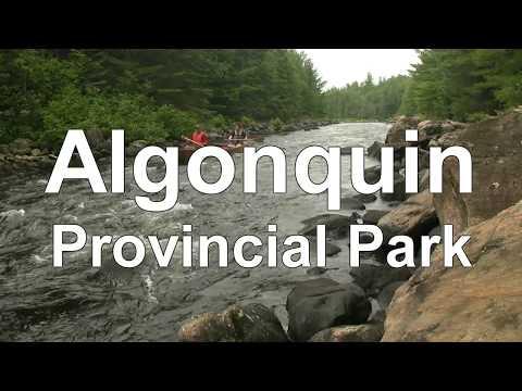 Algonquin Minute
