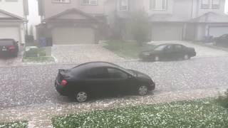Calgary (AB) Canada  City pictures : CRAZY GOLF BALL SIZED HAIL STORM CALGARY, ALBERTA, CANADA - JULY 30 2016