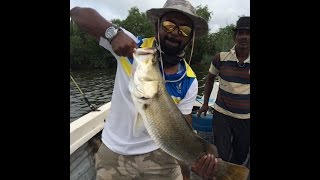 Hendala Sri Lanka  city photo : Barramundi Fishing in Sri Lanka