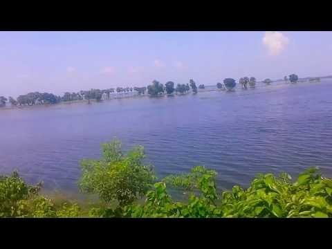 Video मोतिहारी - सेमरा ( पूर्वी चंपारण ) के बीच बाढ़ download in MP3, 3GP, MP4, WEBM, AVI, FLV January 2017
