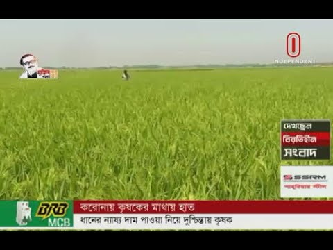 Farmers worry over fair price of paddy in virus-hit market (04-04-2020) Courtesy: Independent TV