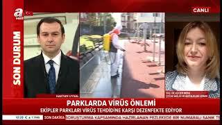 Gaziosmanpaşa'daki Parkları İlaçlama Çalışmaları - A Haber