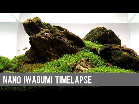 Nano Iwagumi, Hardscape-Timelapse and Development in a Dennerle Scaper's Tank