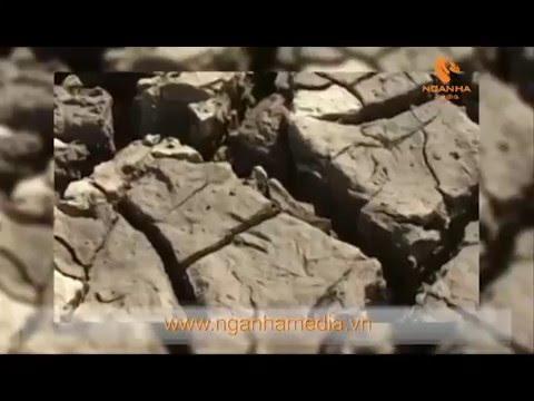 """Giới thiệu phóng sự """"Ứng phó với biến đổi khí hậu vùng miền núi Việt Nam"""""""