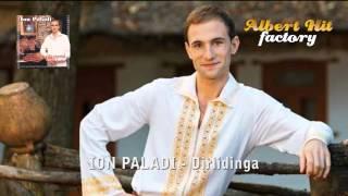 Ion Paladi - Dirlidinga (official)