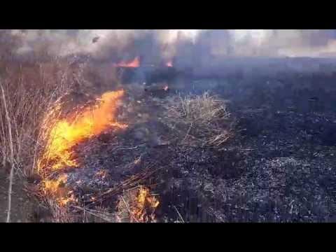 Пожар на Верхней Хортице