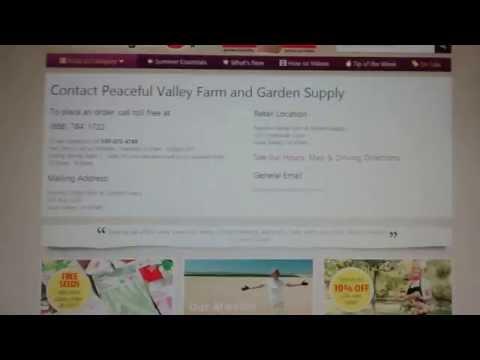 Nurseries online selling fruit plants.