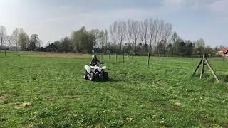 9. Suzuki Quadsport LT-Z90 Jilles 5 Years old in Zieuwent