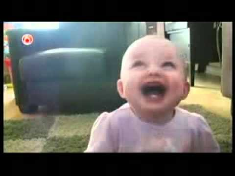★ MAYBE THE BEST FUNNY DOGS COMPILATION EVER Americas Funniest home videos part 370 very funny