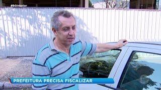 Abordagem de flanelinhas incomoda motoristas de Marília