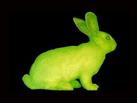 Glow In The Dark Rabbit? — Mind Blow #70