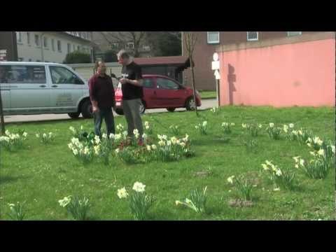 Mündelheim sucht Blumengießer