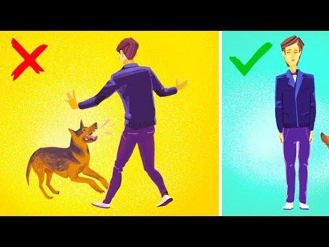 Πως να προστατευθείτε από επίθεση σκύλου