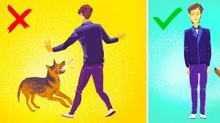 Video How to Survive a Dog Attack MP3, 3GP, MP4, WEBM, AVI, FLV Oktober 2018