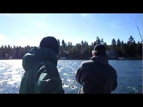 Lucky Bear Fishing Charters Big Bear California