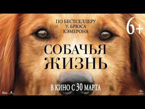 СОБАЧЬЯ ЖИЗНЬ в кино с 30 марта - DomaVideo.Ru