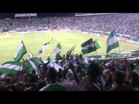 Frente Radical Verdiblanco | Deportivo Cali Vs nacional | 29-Nov-2015 - Frente Radical Verdiblanco - Deportivo Cali