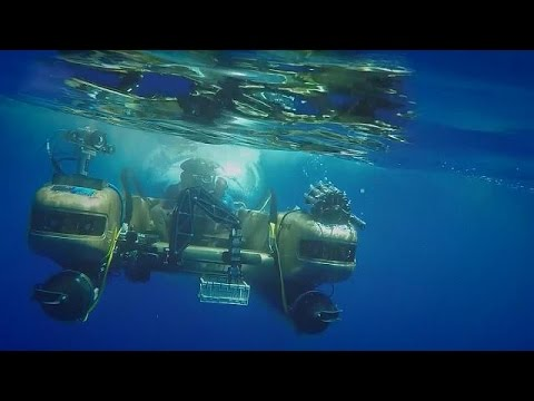 Βερμούδες: Ελέγχοντας την κλονισμένη «υγεία» των ωκεανών – science