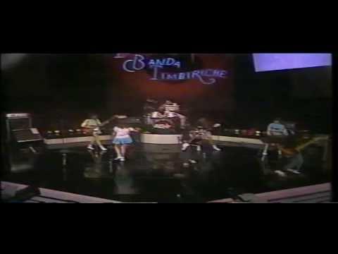 Tekst piosenki Timbiriche - El Gato Rocanrolero po polsku