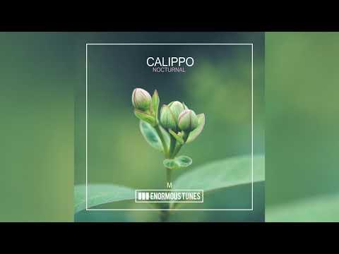 Calippo - Nocturnal
