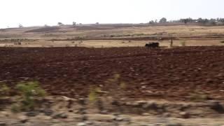Driving Bahir Dar To Gondar