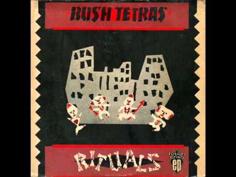 BUSH TETRAS cowboys in africa 1981