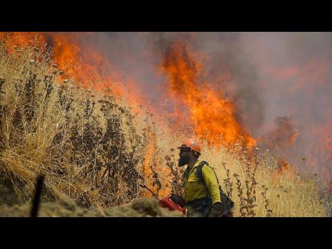 Waldbrände breiten sich im Westen der USA aus