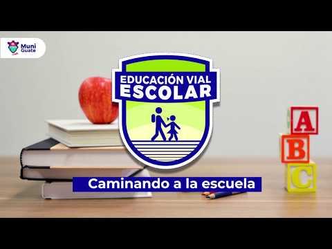 Educación Vial Escolar