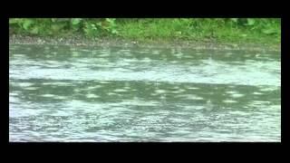 Video Miroslav Skála: Hřiště Fryšava