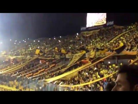 Hinchada de Peñarol estadio campeón del siglo Inaguracion - Barra Amsterdam - Peñarol - Uruguay - América del Sur