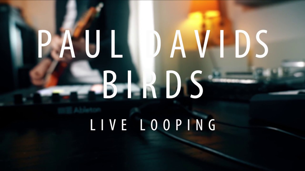 Paul Davids – Live Looping Video – Birds
