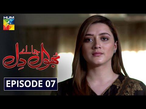 Bhool Jaa Ay Dil Episode 7 HUM TV Drama 24 November 2020