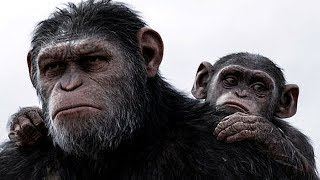 Nonton Planet Of The Apes Full Movie 2018   The Apes Returns At Dawn Film Subtitle Indonesia Streaming Movie Download