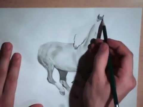 Zeichnung von einem Pferd