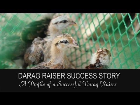 Darag Raiser Success Story (2014)